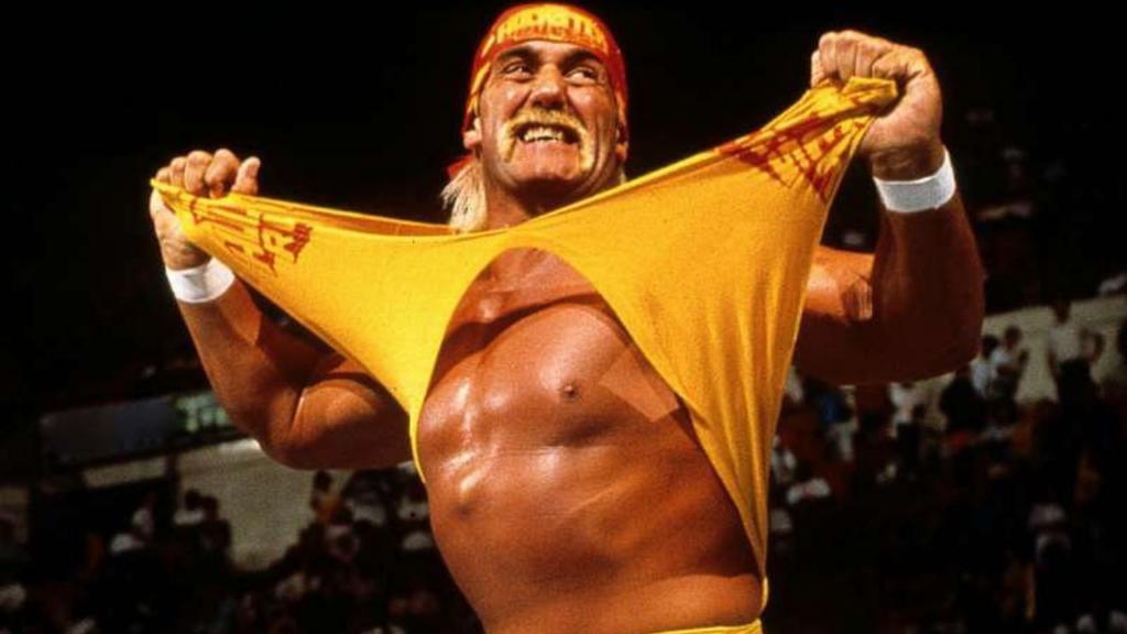 Hulk Hogan Profile
